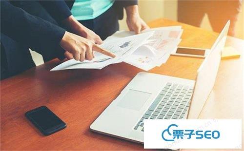 企业网站SEO优化策略有哪些 - 栗子SEO分享